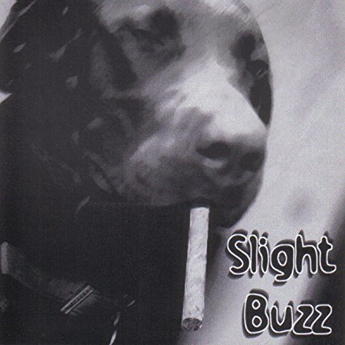 Slight Buzz - Slight Buzz (2016)