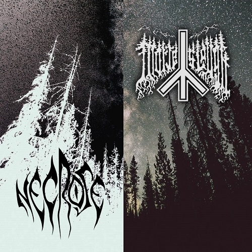 Necrose & Morte Slough - Necrose/Morte Slough [split] (2015)