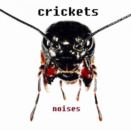 Crickets - Noises (2016)