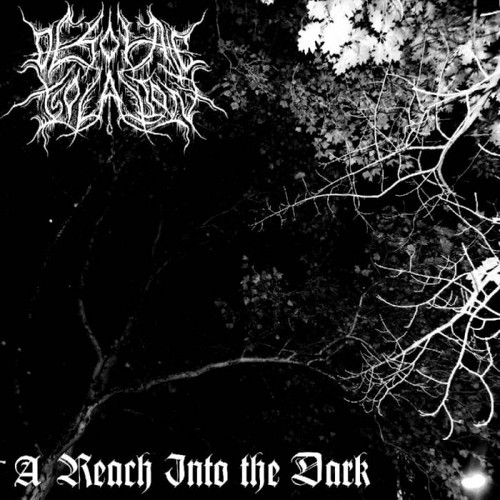Desolate Isolation - A Reach Into Еhe Dark (2015)
