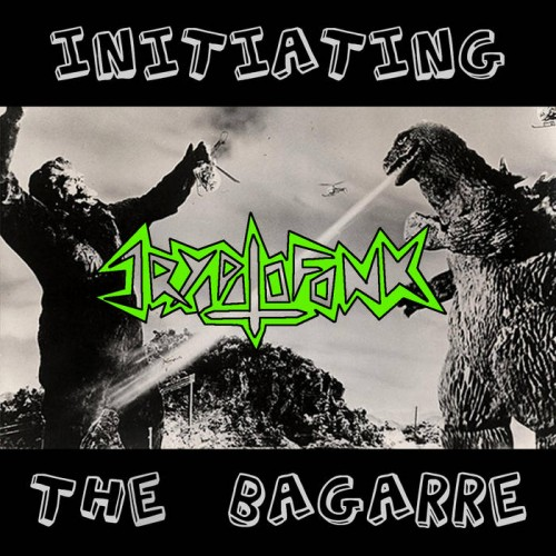 Cryptofonk - Initiating The Bagarre (Compilation) (2016)