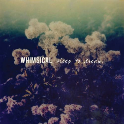 Whimsical - Sleep to Dream (2017)