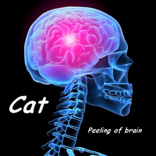 Cat - Cat: Peeling of Brain (2017)