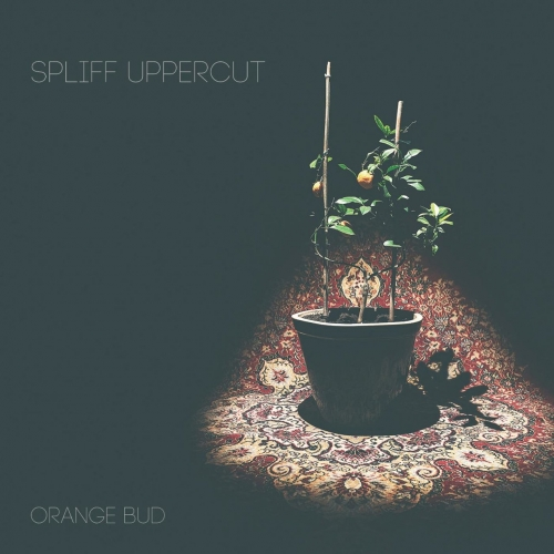 Spliff Uppercut - Orange Bud (2017)