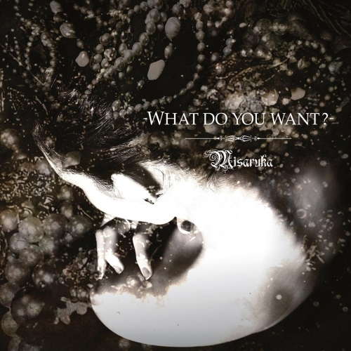 Misaruka - What Do You Want? (2017)