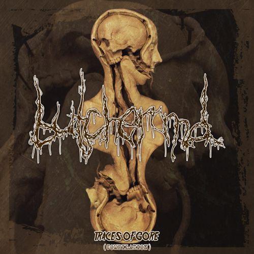 Butcher M.D. - Traces Of Gore (Compilation) (2016)