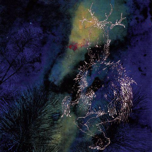 Bardo Pond - Under The Pines (2017)
