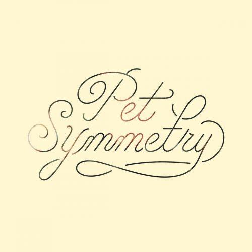 Pet Symmetry - Visions (2017)