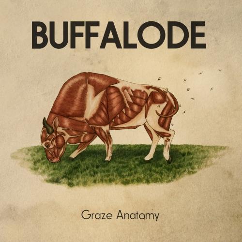 Buffalode - Graze Anatomy (2017)
