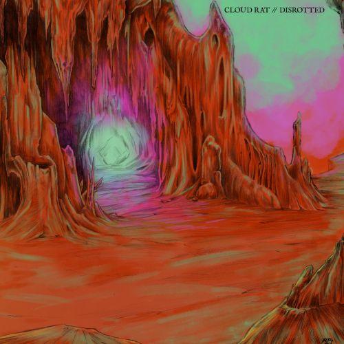 Cloud Rat / Disrotted - Split LP (2017)