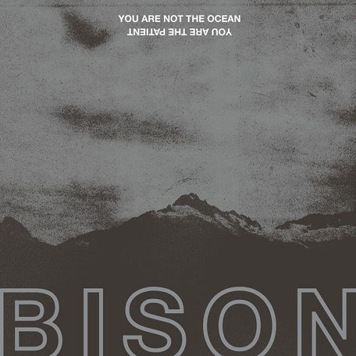 Bison B.C.  - You Are Not The Ocean You Are The Patient (2017)