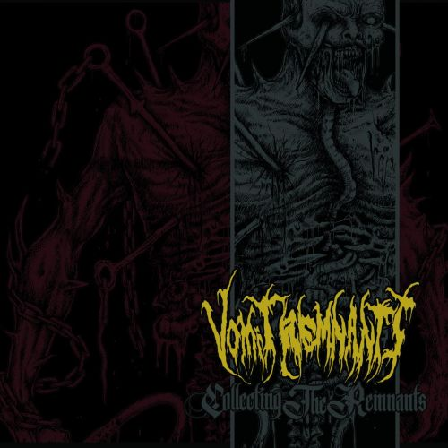 Vomit Remnants - Collecting the Remnants (Compilation, 2CD) (2017)