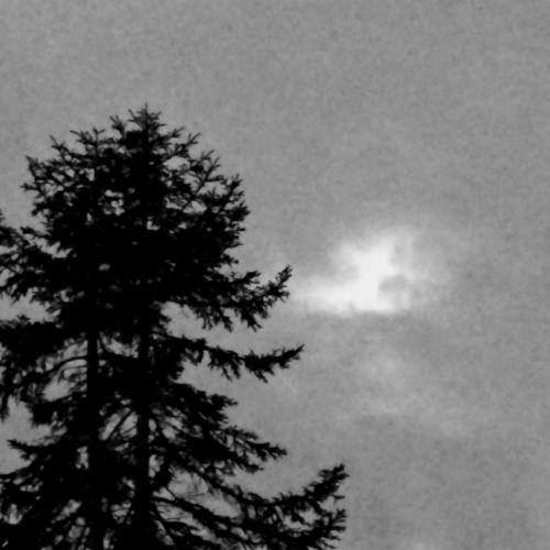 Cascades Of Darkness - True Nw Black Metal (2017)