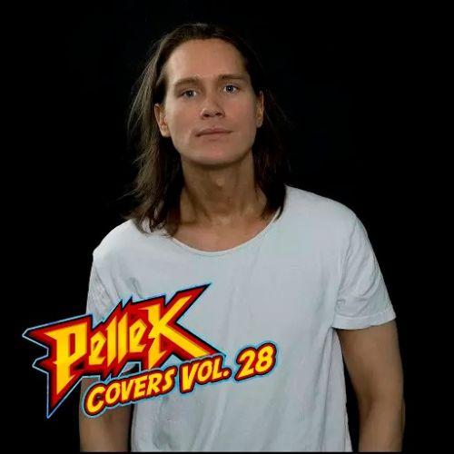 PelleK - Covers, Vol. 28 (2017)