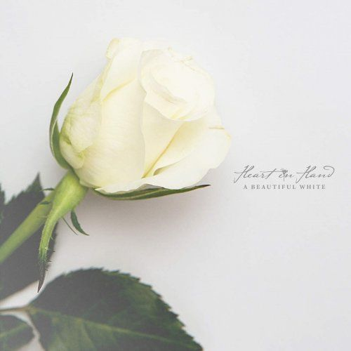 Heart in Hand - Discography (2009-2014)