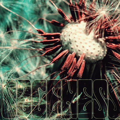 Sageness - Sageness [EP] (2017)