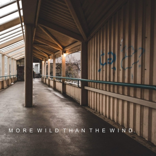 Shine Bright - More Wild Than the Wind (EP) (2017)