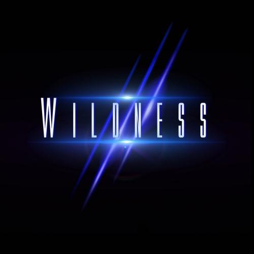 Wildness - Wildness (2017)