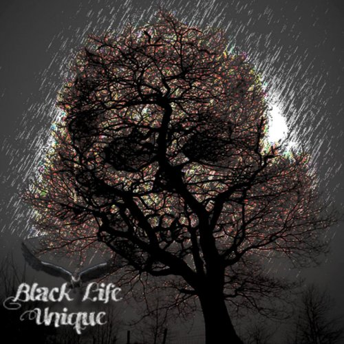Black Life Unique - Down With Me (2017)