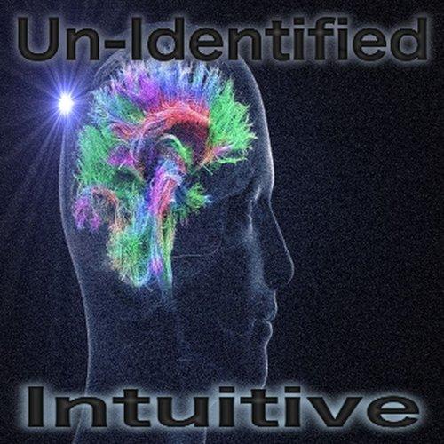 Un-Identified - Intuitive (2017)