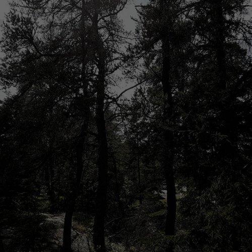 Dark October - Dusk (2017)