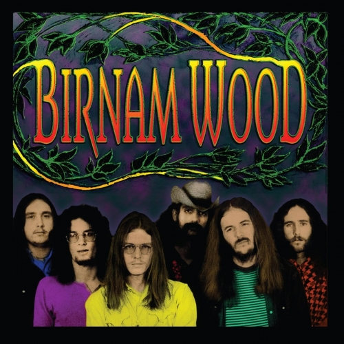 Birnam Wood Band - Birnam Wood (2017)