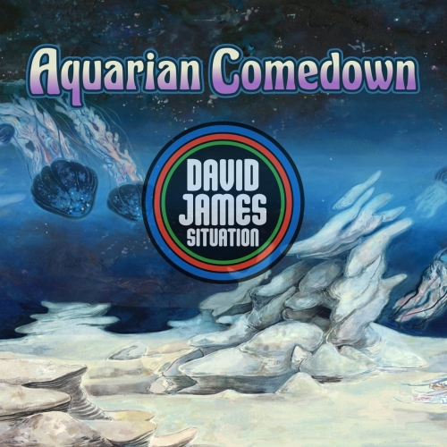 David James Situation - Aquarian Comedown (2017)