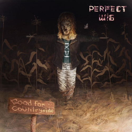 Perfect Wig - Good for Countryside (2017)