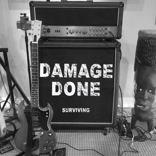 Damage Done - Surviving (2017)