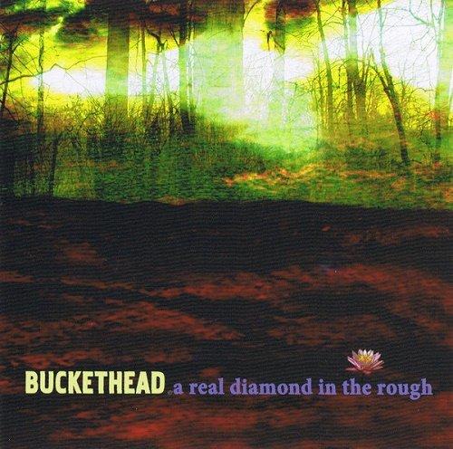 Buckethead - A Real Diamond In The Rough (2009)