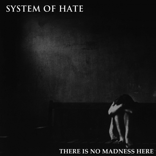 System of Hate - There Is No Madness Here (2018)