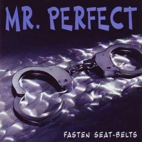Mr. Perfect - Fasten Your Seat-Belts (1993)