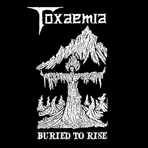 Toxaemia - Buried to Rise: 1990-1991 Discography (2010)