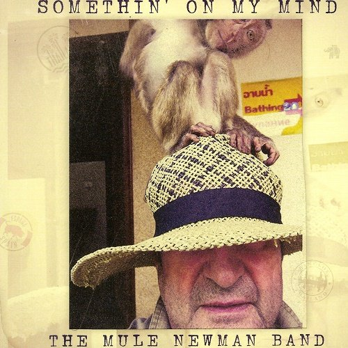 The Mule Newman Band - Somethin' On My Mind (2015)