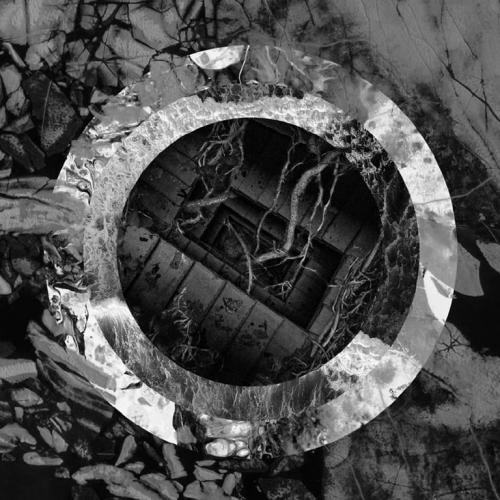 Torpor - Rhetoric of the Image (2019)