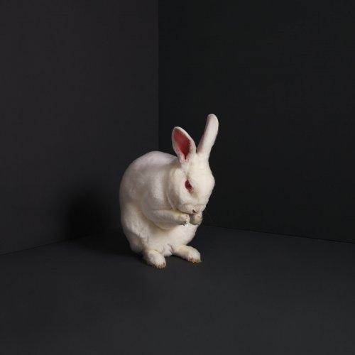 Brume - Rabbits (2019)