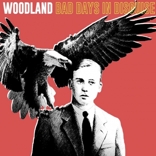 WOODLAND - Bad Days in Disguise (2019)