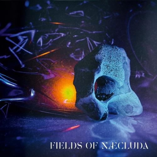 Fields of Næcluda - Fields of Næcluda (2019)