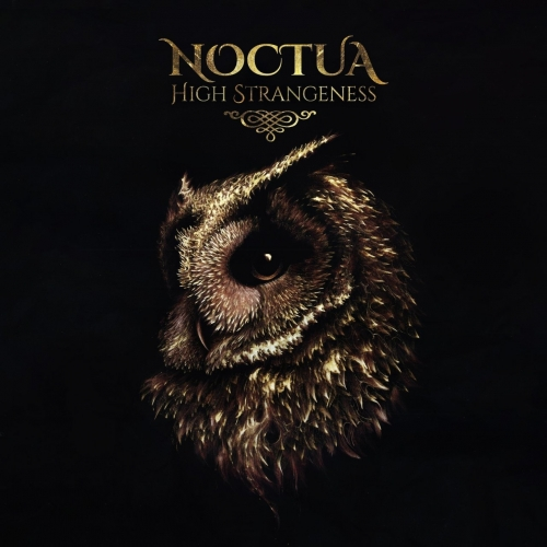 Noctua - High Strangeness (2020)