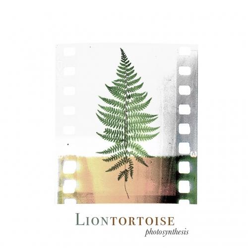 Liontortoise - Photosynthesis (EP) (2020)