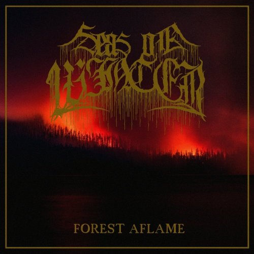 Seas of Winter - Forest Aflame (2020)