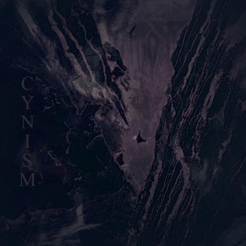 Rawrorr - Cynism (2020)