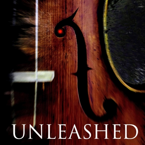 Violin Shredder - Unleashed (2020)