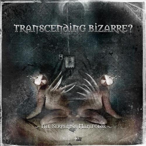 Transcending Bizarre? - Discography (2003-2010)