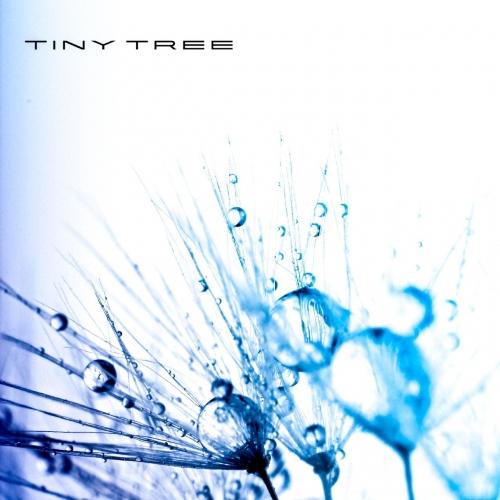 Tiny Tree - Embolism (2020)