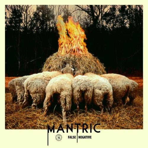 Mantric - False Negative (2020)