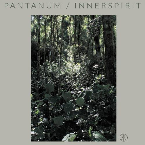 Pantanum - Innerspirit (2020)