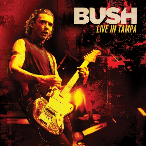 Bush - Live in Tampa (2020)