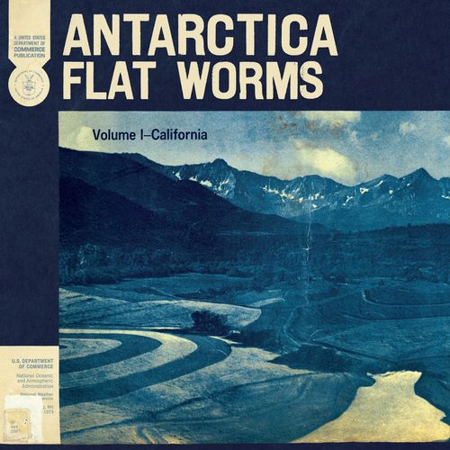Flat Worms - Antarctica (2020)