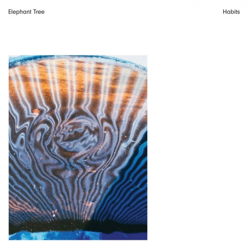 Elephant Tree - Habits (2020)